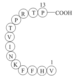 Myelin Basic Protein (87-99)