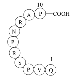 Dynamin inhibitory peptide