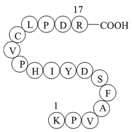coagulation factor II (thrombin) B chain fragment [Homo sapiens]