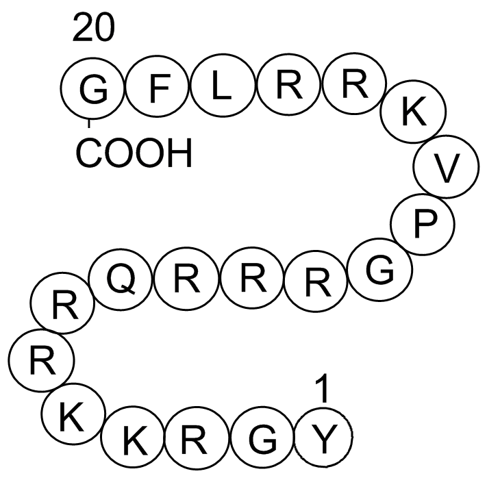 Cdk2/Cyclin Inhibitory Peptide I