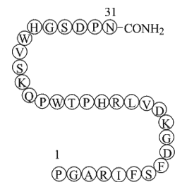 Endostatin (84-114)-NH2 (JKC367)