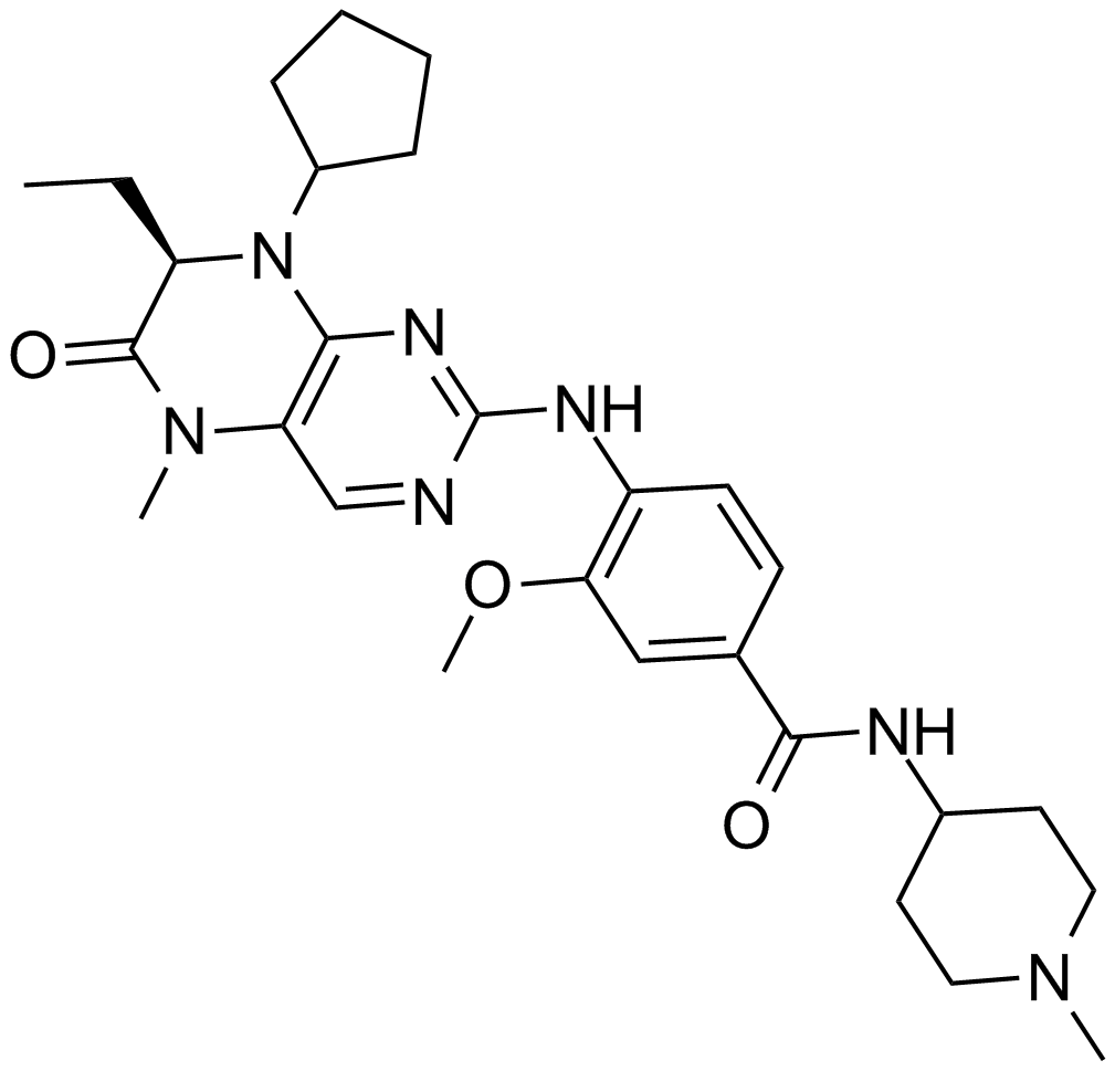 BI 2536