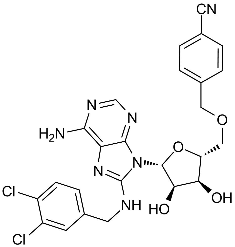 VER 155008