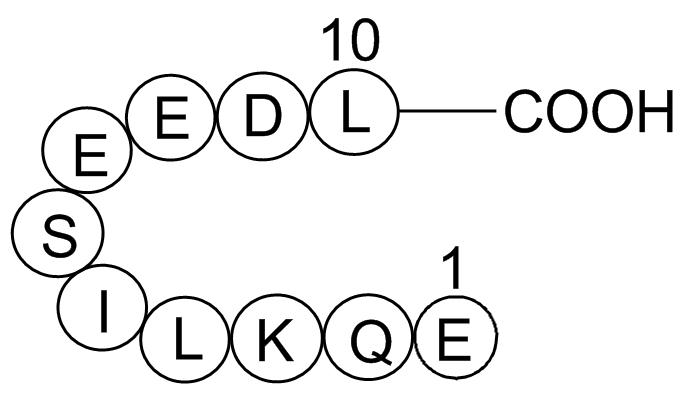 c-Myc tag Peptide