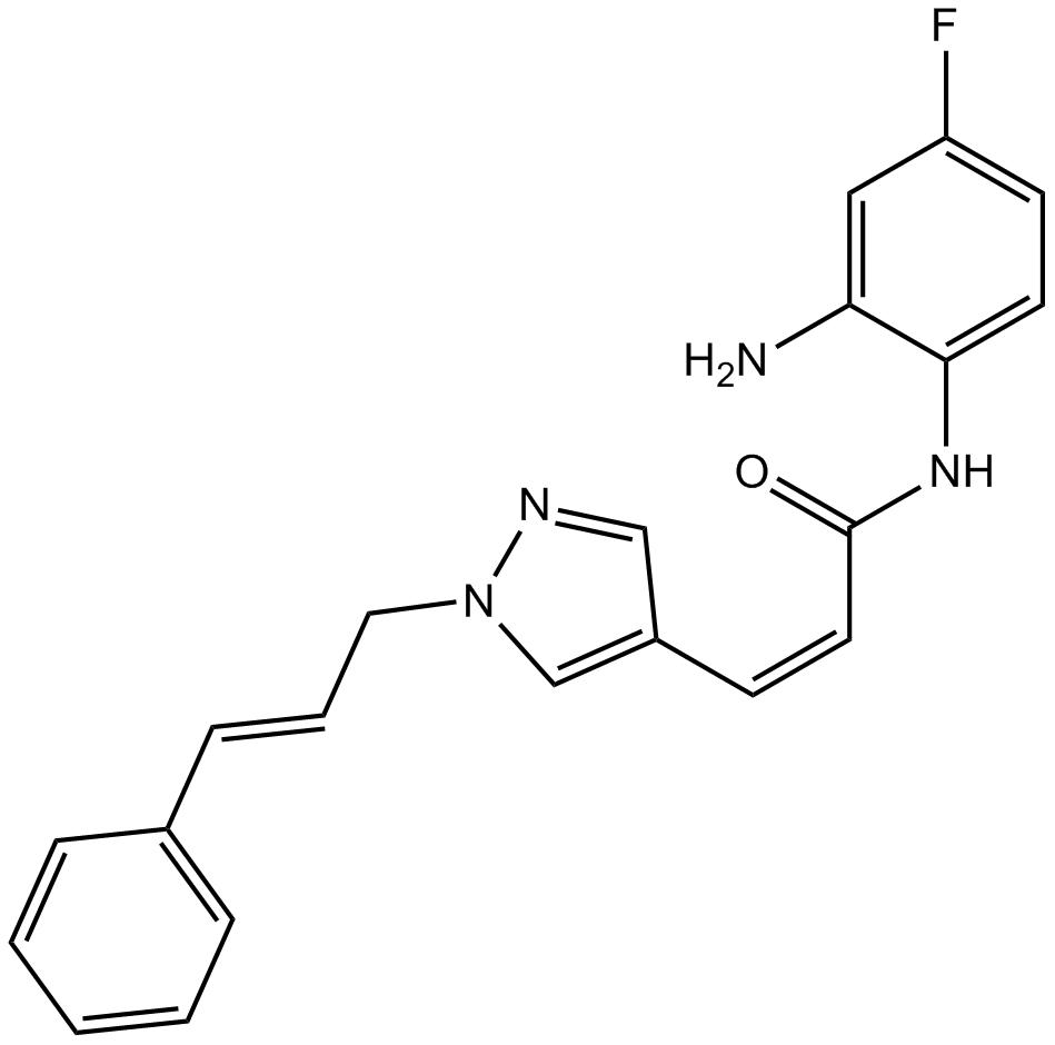 RGFP966