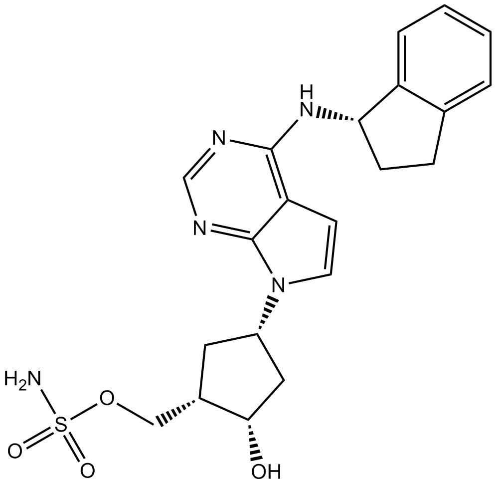 MLN4924