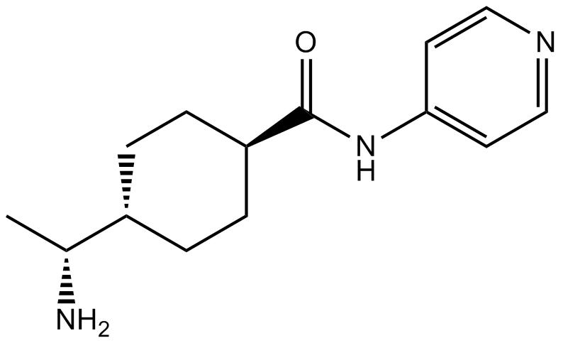 Y-27632