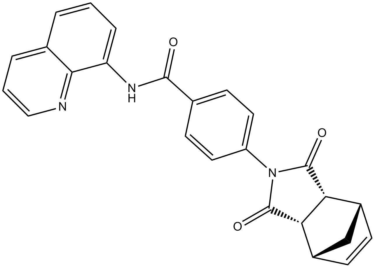 IWR-1-endo
