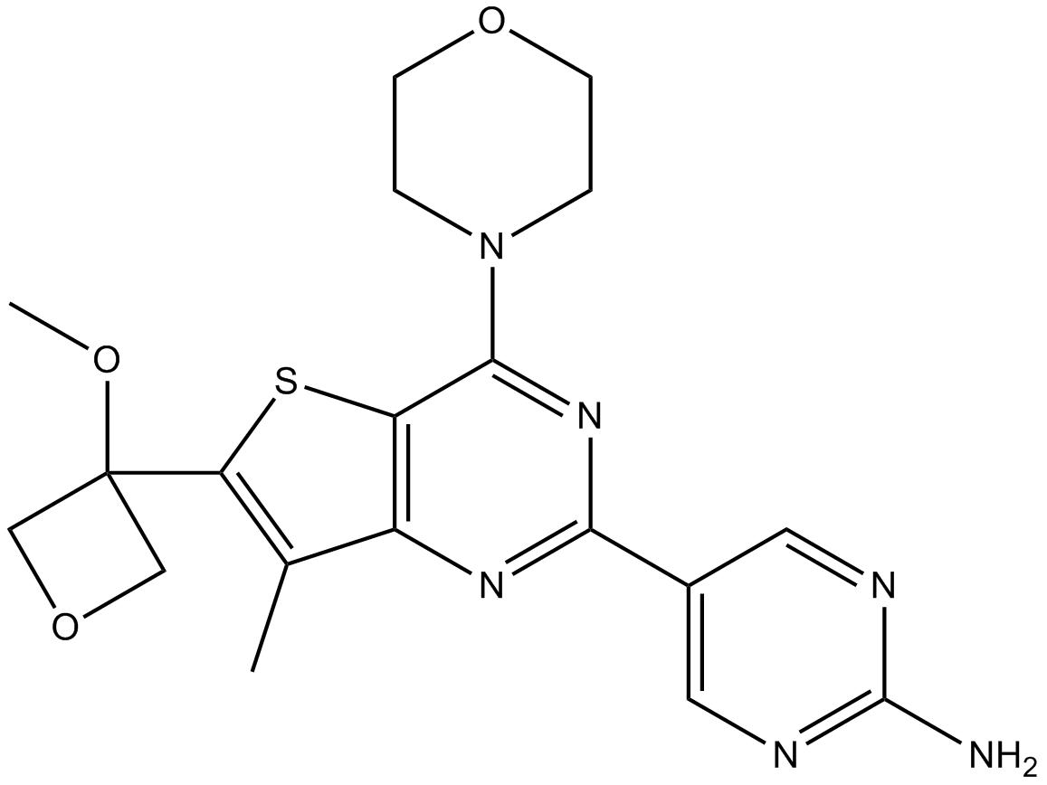 GNE-317