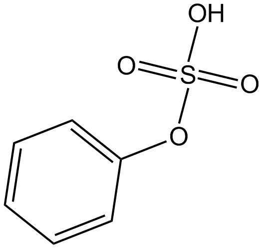 Phenyl sulfate
