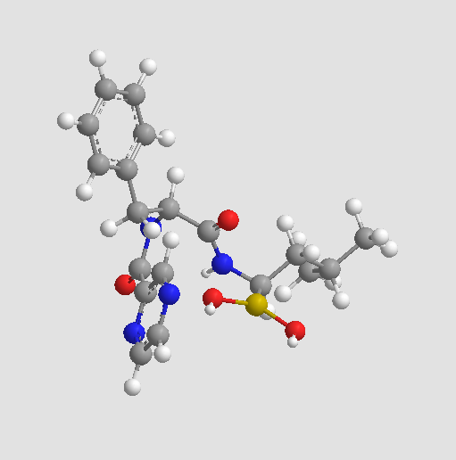Bortezomib (PS-341)