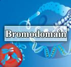 Bromodomain