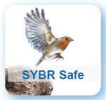 SYBR Safe
