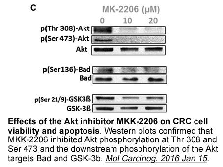 MK-2206 dihydrochloride