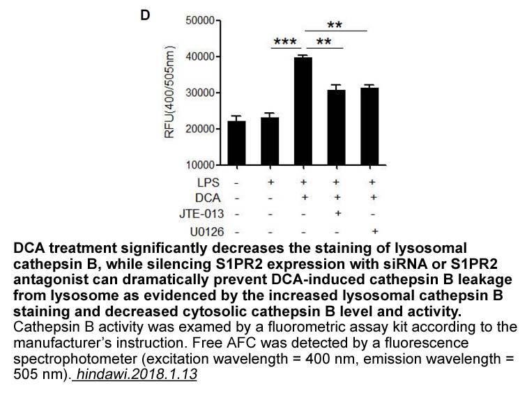 Cathepsin B Activity Fluorometric Assay Kit