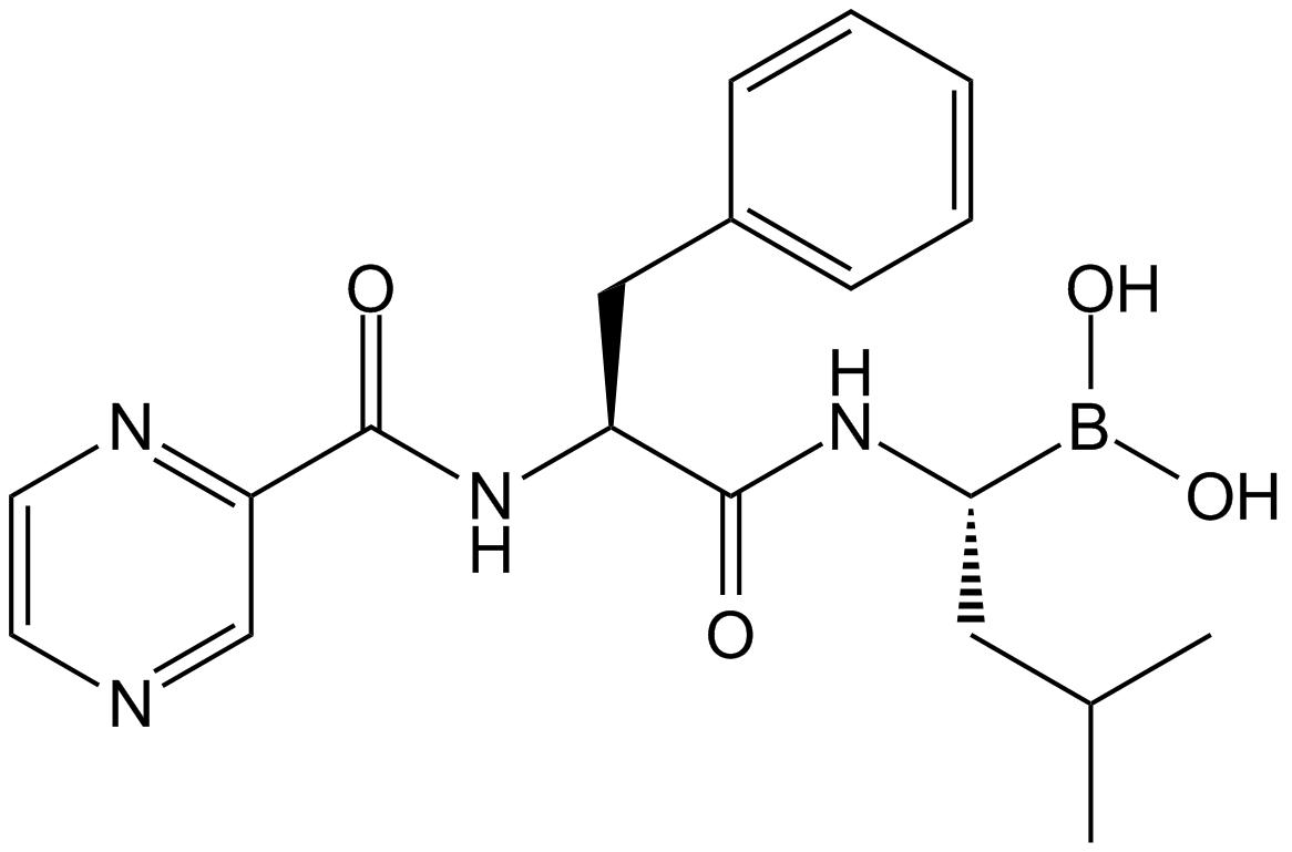 APExBIO - Bortezomib (PS-341)|Proteasome Inhibitor|CAS# 179324-69-7