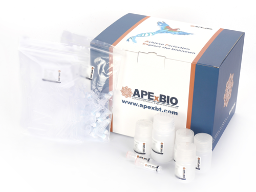 ApexPrep DNA Plasmid Miniprep Kit