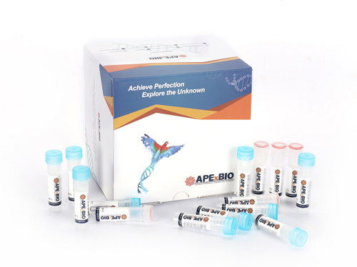 HyperScribe™ All in One mRNA Synthesis Kit II (EZ Cap Reagent AG (3' OMe), T7, poly(A))