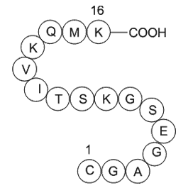GTP-Binding Protein Fragment, G alpha