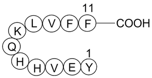 Amyloid β-Peptide (10-20) (human)