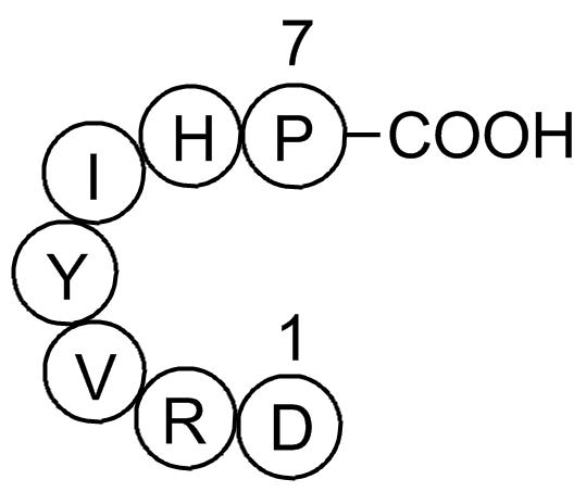 Angiotensin (1-7)