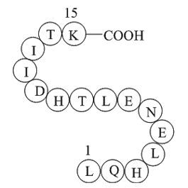 alpha-1 antitrypsin fragment