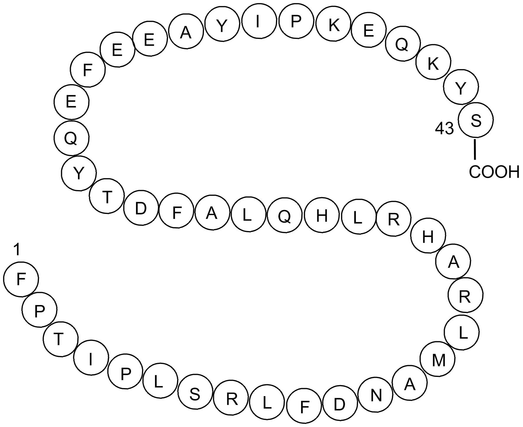 Growth Hormone (1-43), human