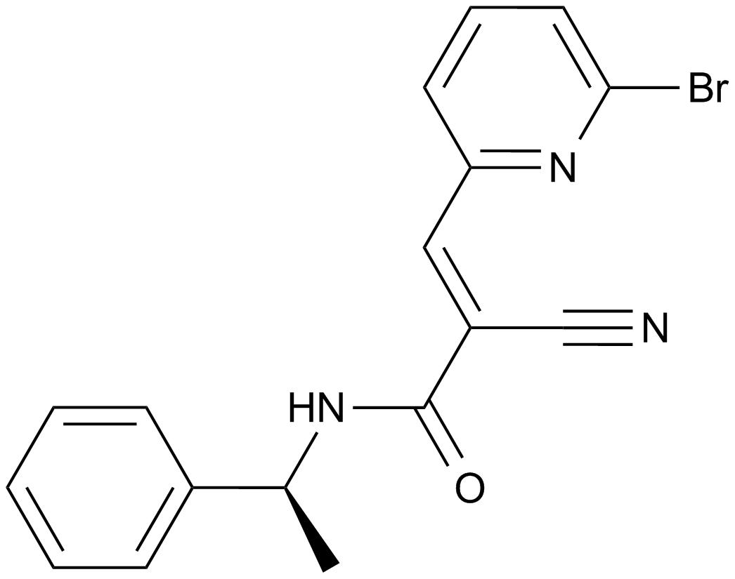 WP1066