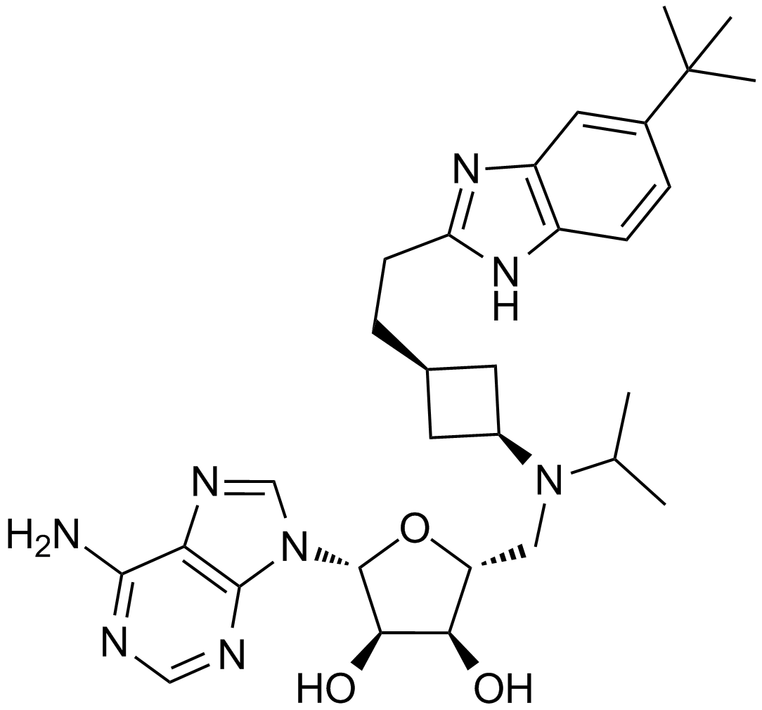 EPZ5676