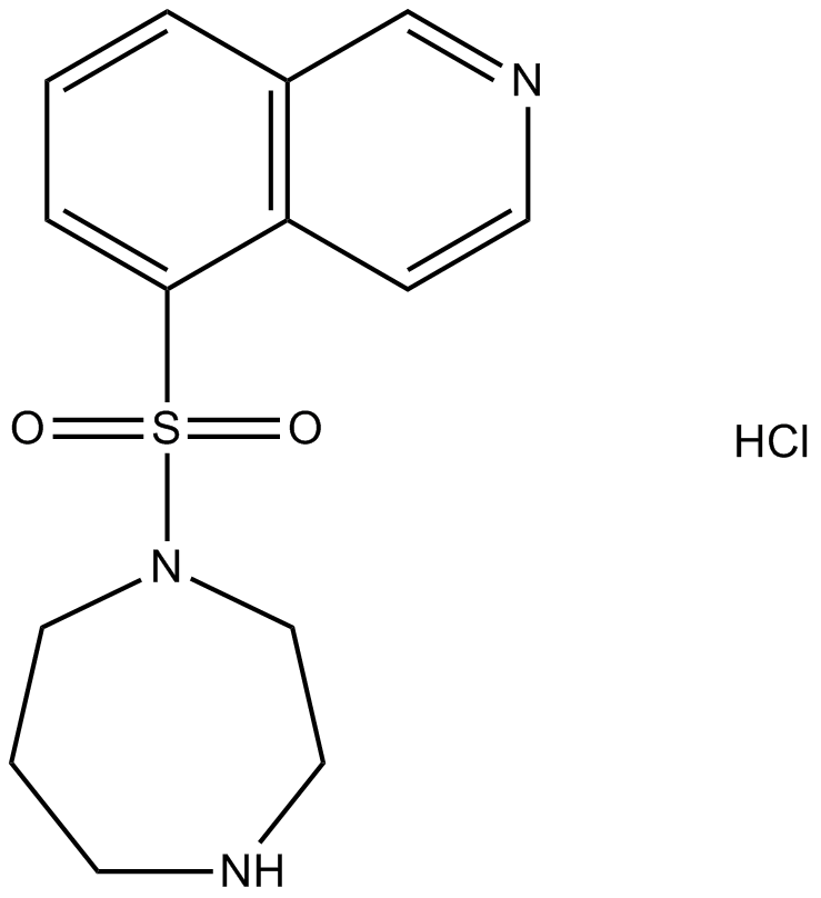 Fasudil (HA-1077) HCl