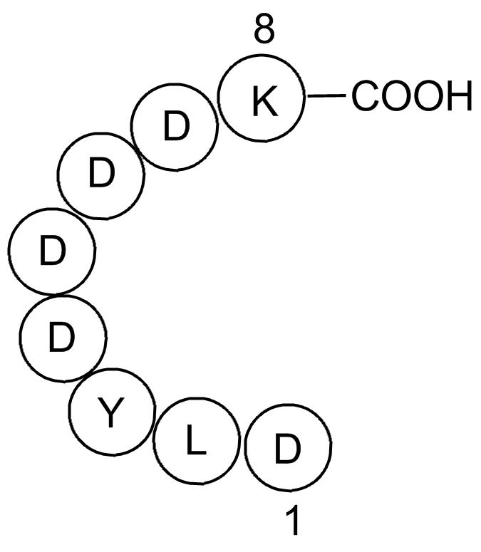 X-press Tag Peptide