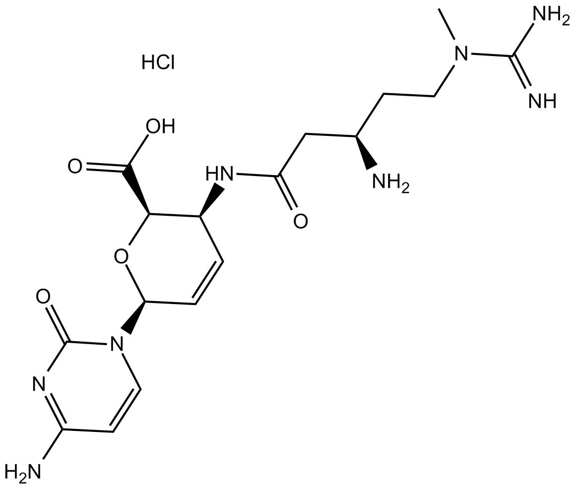 Blasticidin S HCl