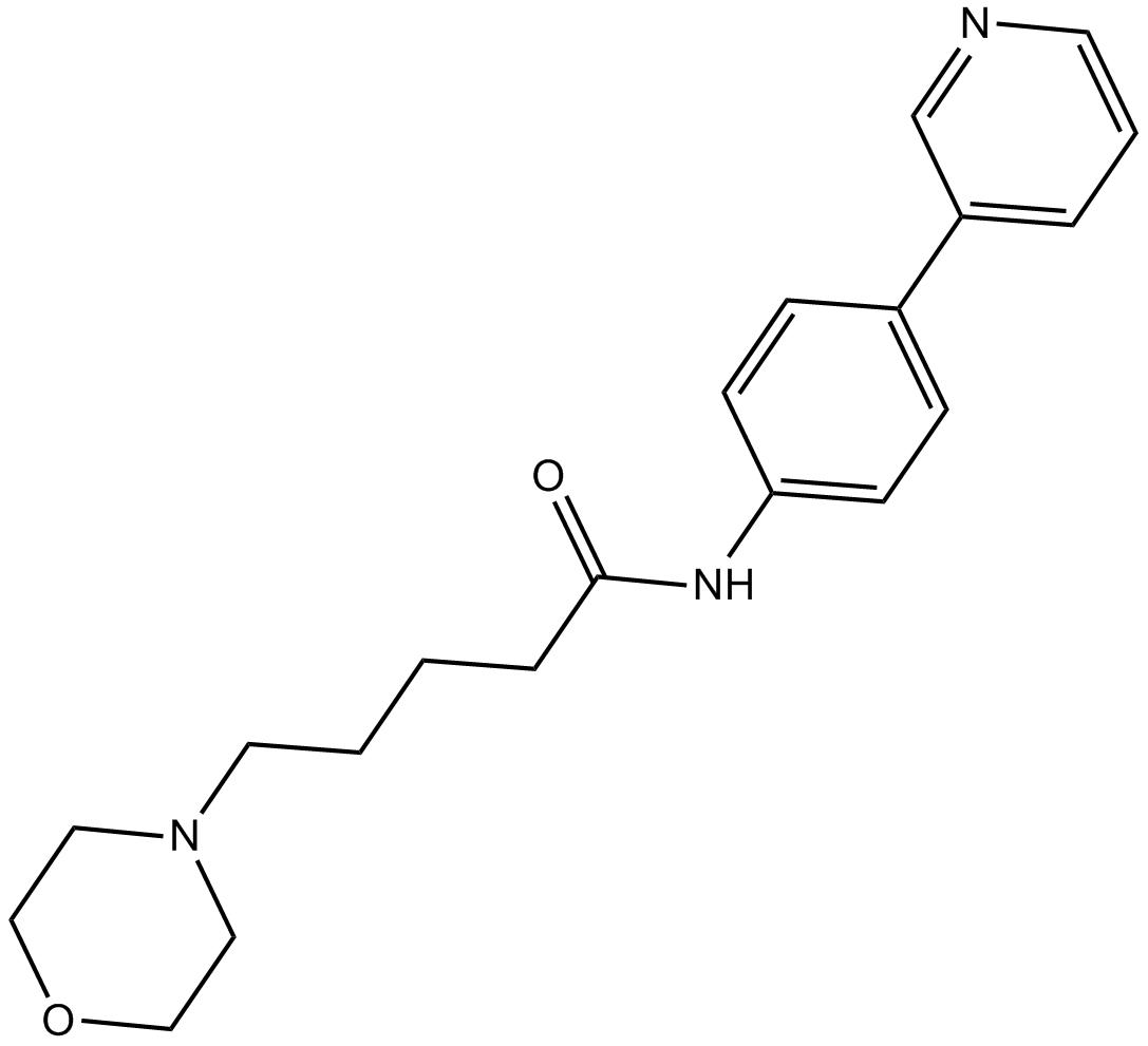 SEN 12333