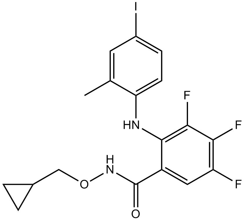 PD 198306