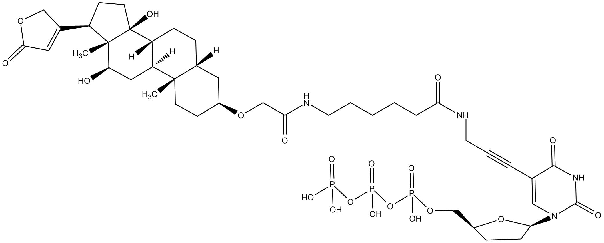 Digoxigenin-11-ddUTP