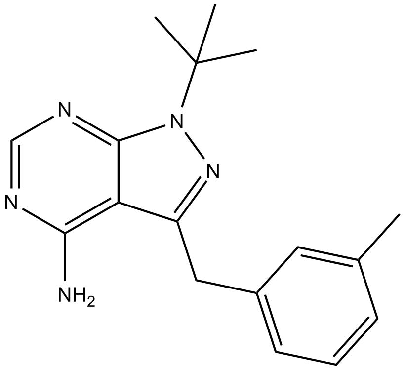 3MB-PP1