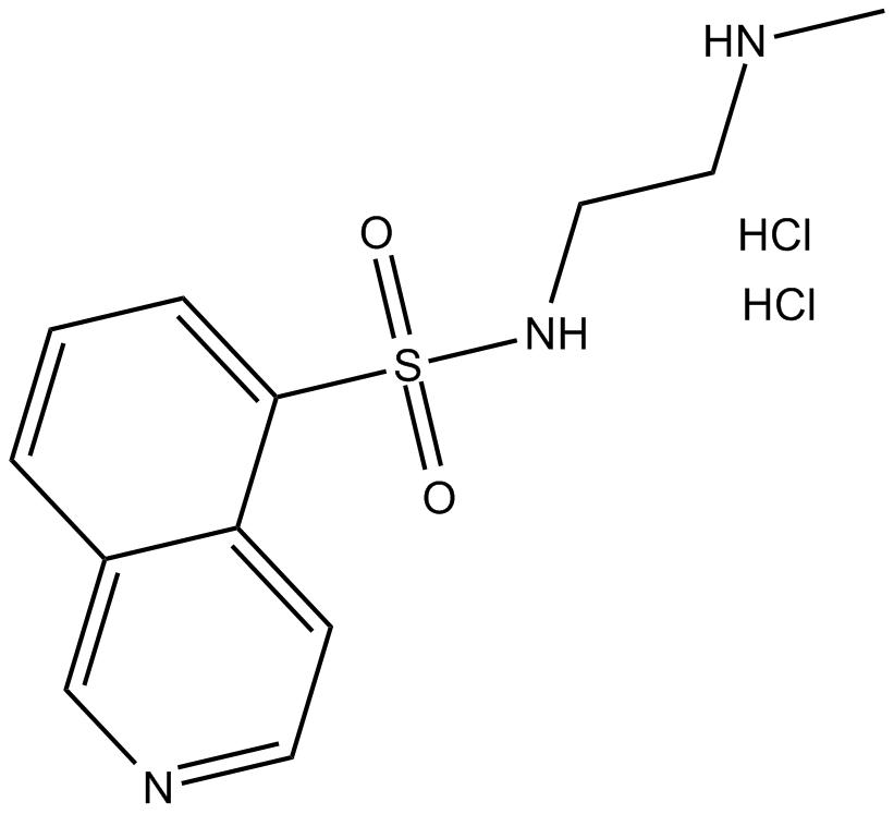 H-8 (hydrochloride)