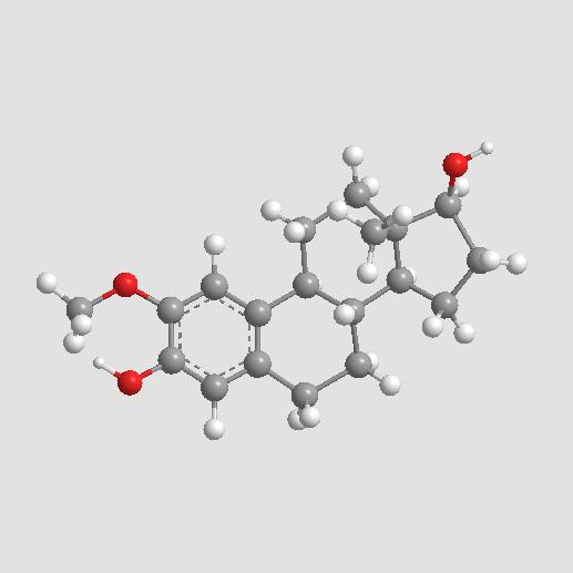 2-Methoxyestradiol (2-MeOE2)