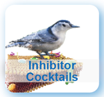 Inhibitor Cocktails