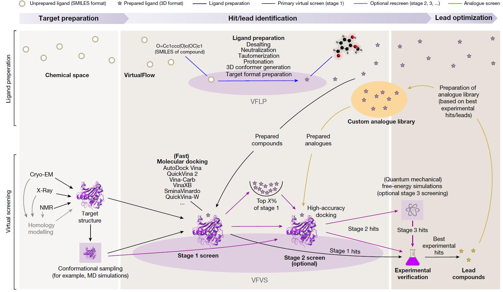 Workflow of Virtual Screening