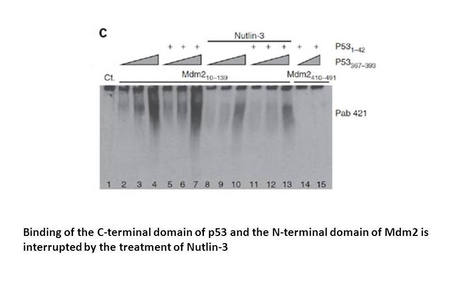 Nutlin-3a chiral