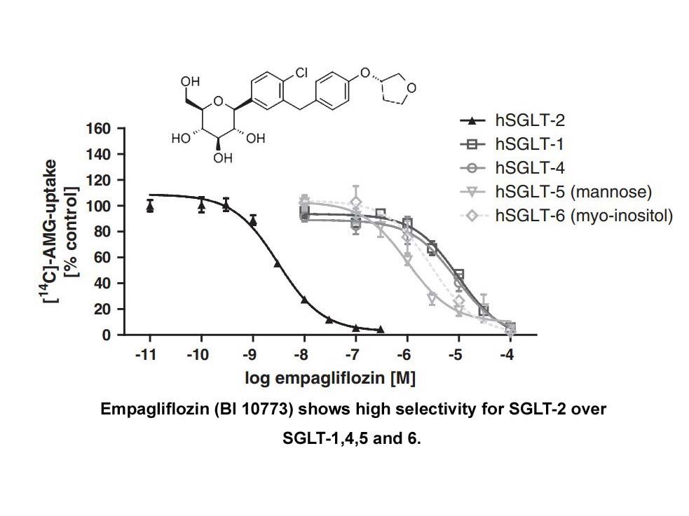 Empagliflozin (BI 10773)