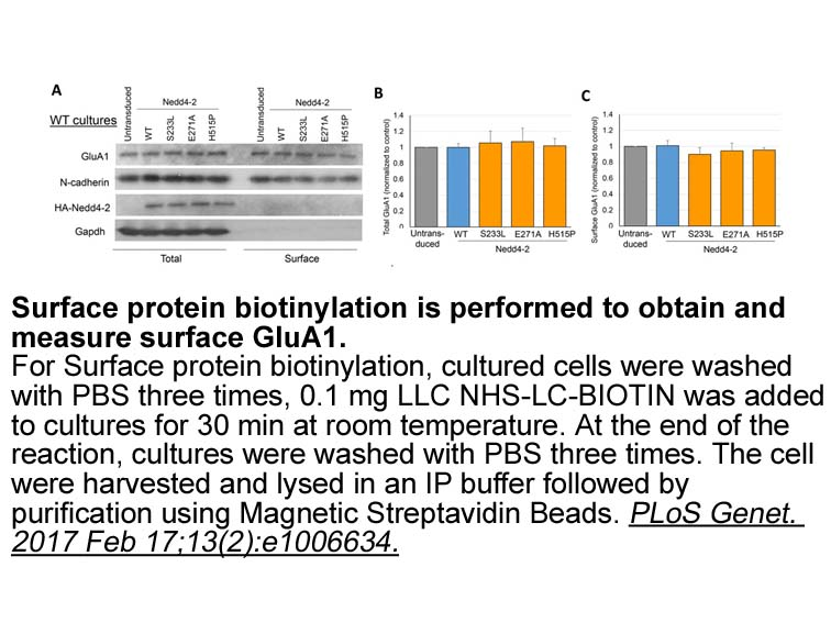 NHS-LC-Biotin
