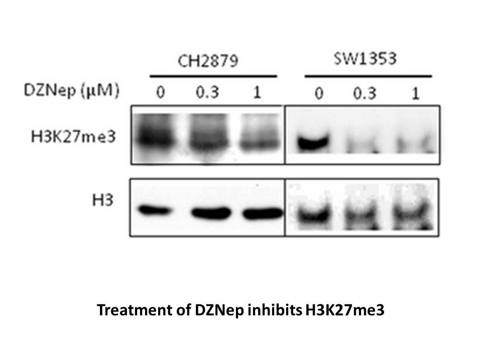 3-Deazaneplanocin A (DZNep) hydrochloride