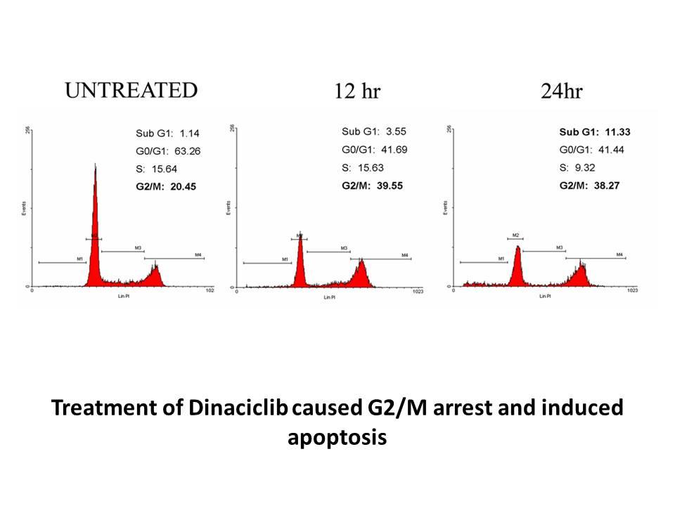 Dinaciclib (SCH727965)