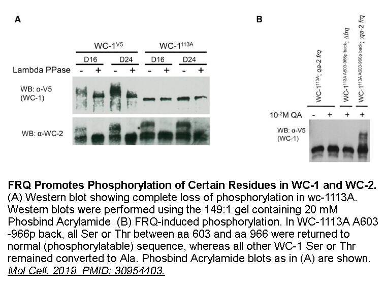 Phosbind Acrylamide