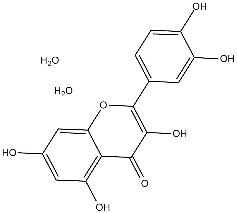 Quercetin dihydrate